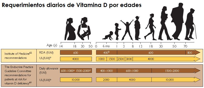 Lo que necesitas saber sobre la vitamina D Parte 2: ¿Cuánta y paraqué?