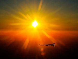 Vit D sol1