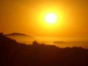 Vit D sol2
