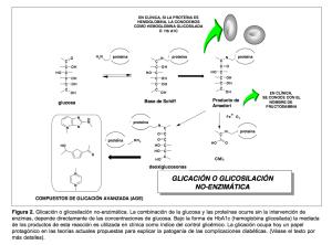 Productos avanzados de glucosilación