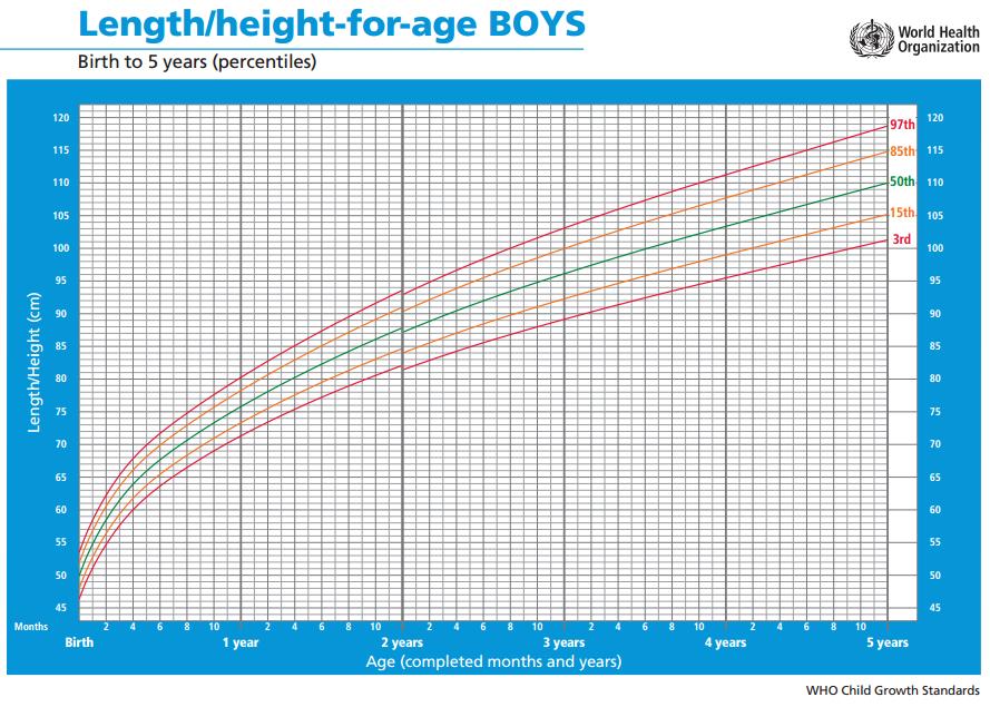 curvas de crecimiento percentiles oms